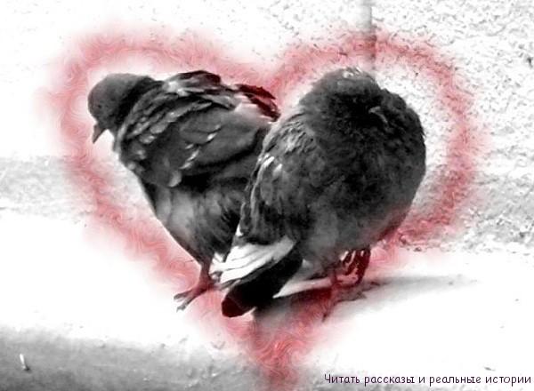 От ненависти до любви всего один шаг
