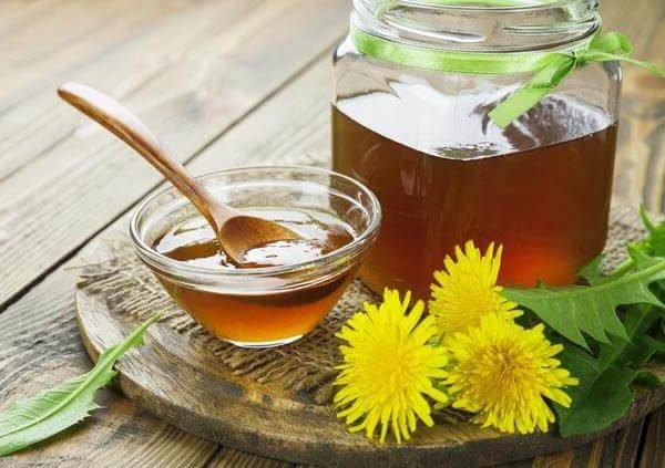 Одуванчик лекарственный – описание, польза и вред, рецепты, отзывы