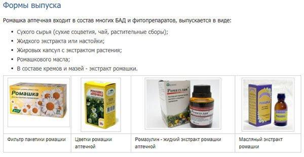 Ромашка аптечная — описание, польза и вред, рецепты, отзывы