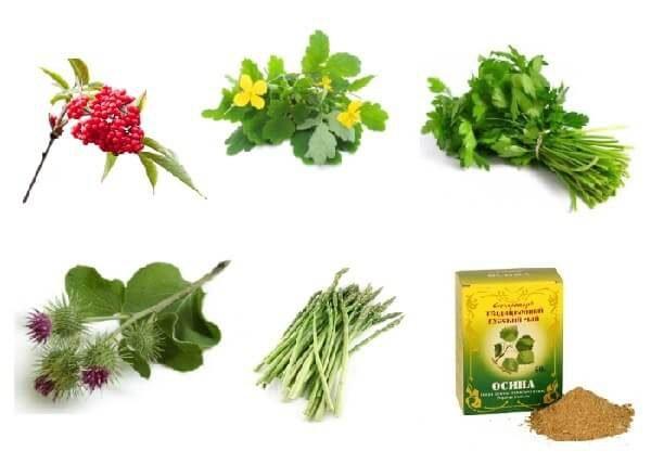 Травы от простатита и эффективные рецепты отваров