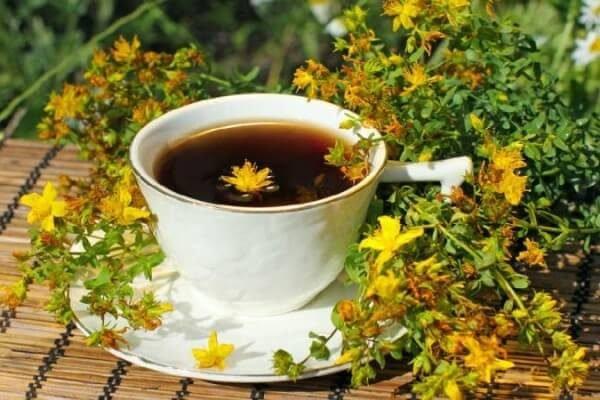 Какие травы заменяют кофе? ТОП-5 вариантов взбодриться.