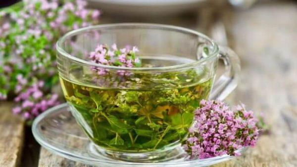 Травы для похудения – какие травы помогают похудеть?