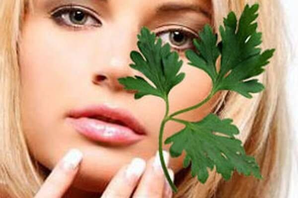 Травы от отеков как применять? Лучшие рецепты народной медицины