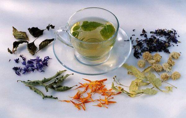 Травы от бессонницы и ТОП-10 рецептов для крепкого сна.