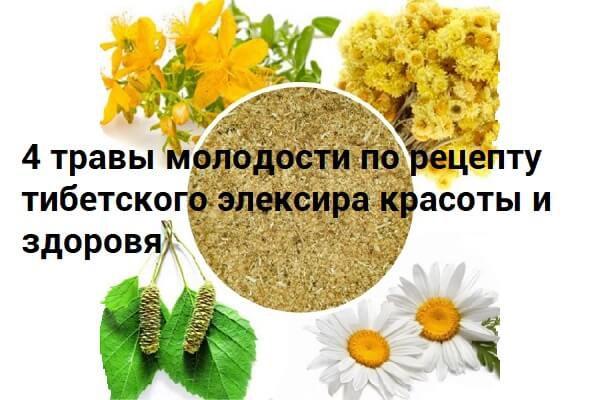 Лекарственные травы для красоты и молодости