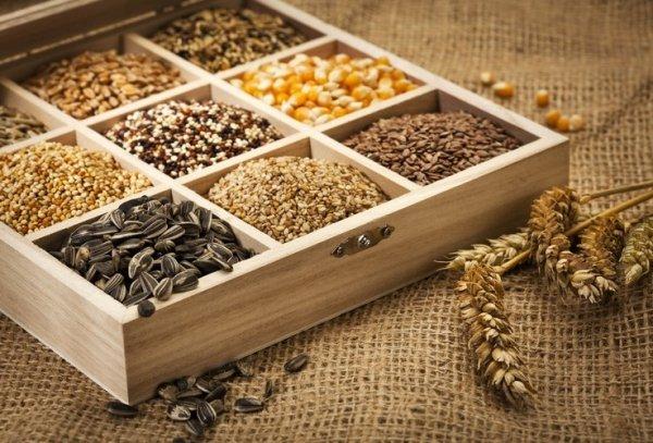 Семена хранение и обработка
