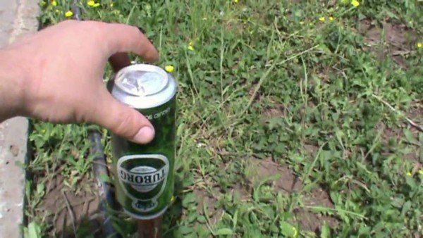 Как бороться с кротами на дачном участке
