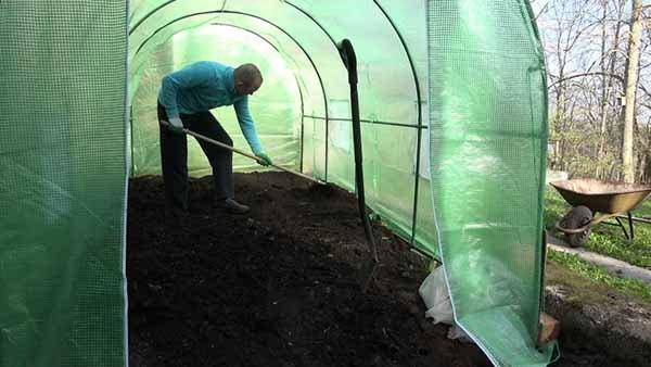 Обработка теплицы весной и подготовка почвы для посадки рассады