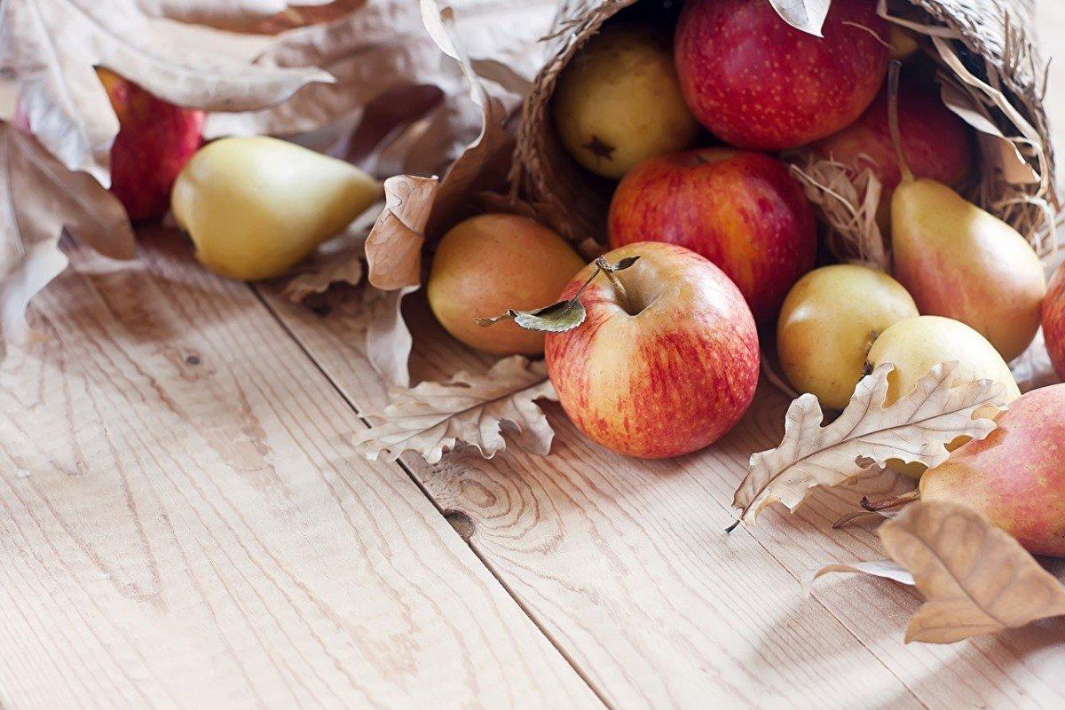 Чем подкормить яблони и груши осенью