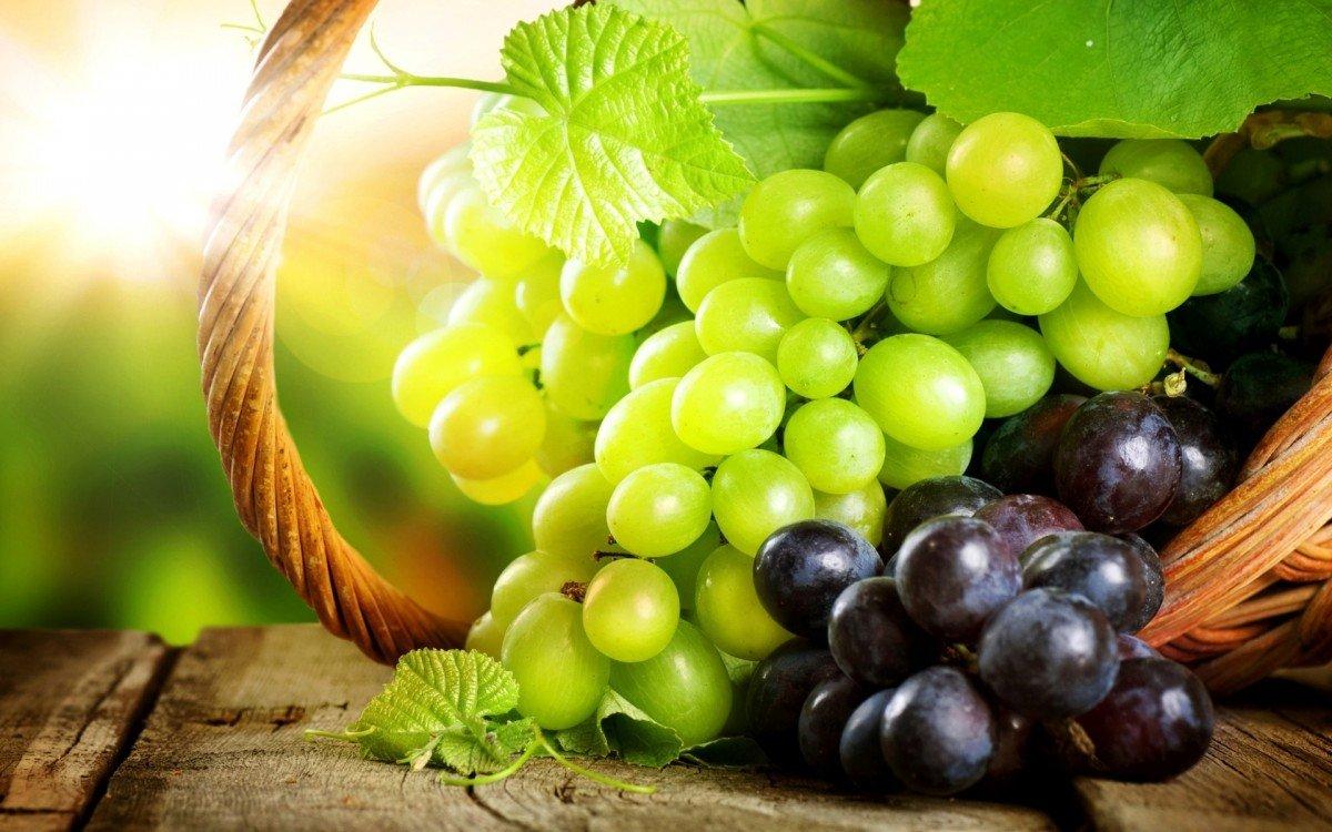 Обрезка винограда весной для начинающих схема