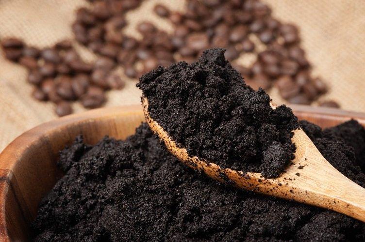 Кофейная гуща, как удобрение - для каких растений?
