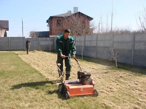 Уход за газоном весной на даче - его восстановление после зимы