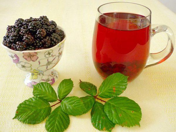 Ежевика – описание, польза и вред, рецепты, отзывы