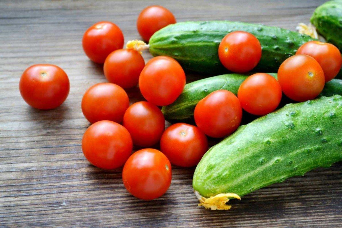Дрожжи для подкормки помидоров и огурцов рецепт