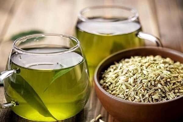 Фенхель – лечебные свойства и 14 полезных свойств чая из фенхеля