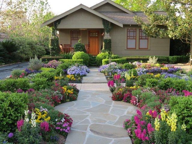 Декоративные кустарники для сада и огорода с названиями и фотографиями