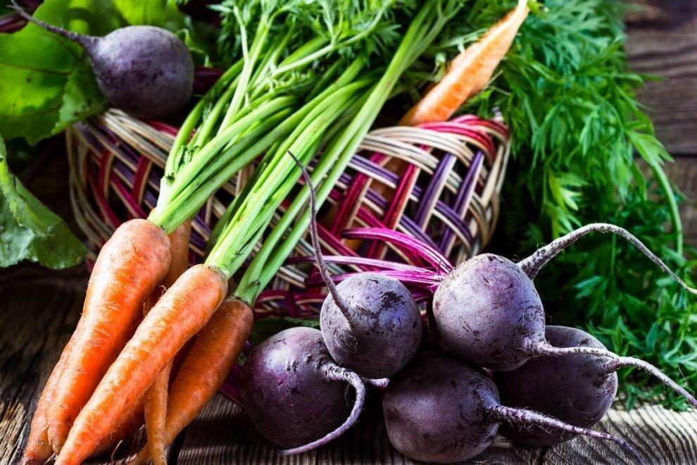 Чем подкармливать морковь и свеклу народными средствами