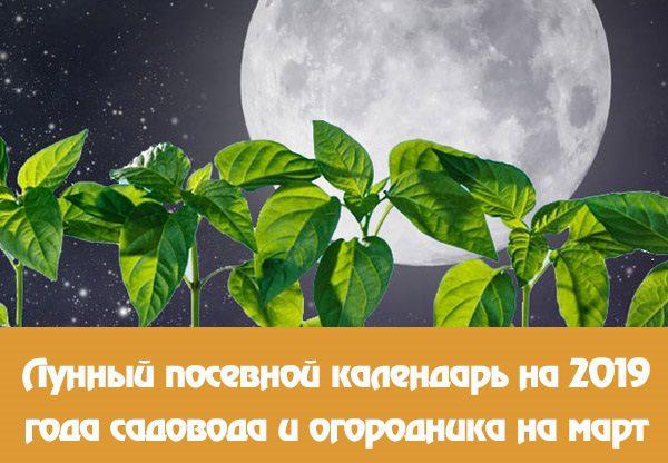 Лунный календарь садовода и огородника на март 2019 года