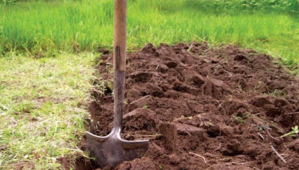 Копка земли. Когда и как нужно правильно пахать землю в огороде?