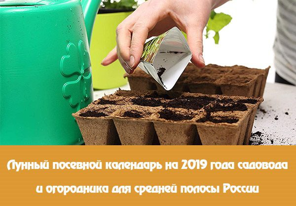 Лунный посевной календарь на 2019 года садовода и огородника для средней полосы России