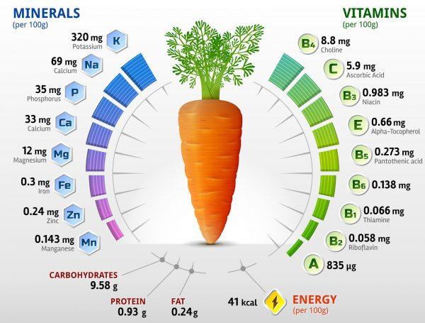 Полезные свойства моркови - состав и противопоказания