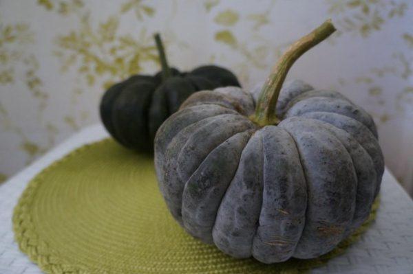 Необычные тыквы сорта вкусные и красивые, фото и описание