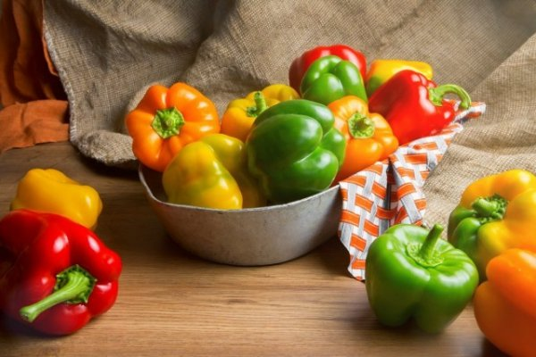 Сорта перца для фаршировки, лечо и салатов - ТОП-5 с фото и описанием