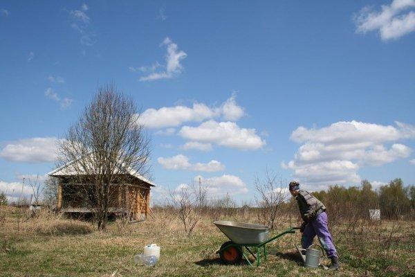Садовая техника для дачи и дома для наведения порядка