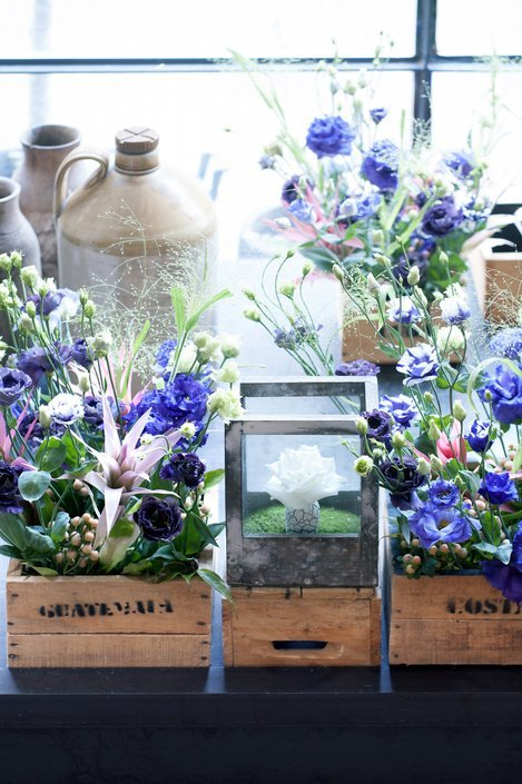 Лучшие цветы для выращивания живых букетов на подоконнике с фото и описанием