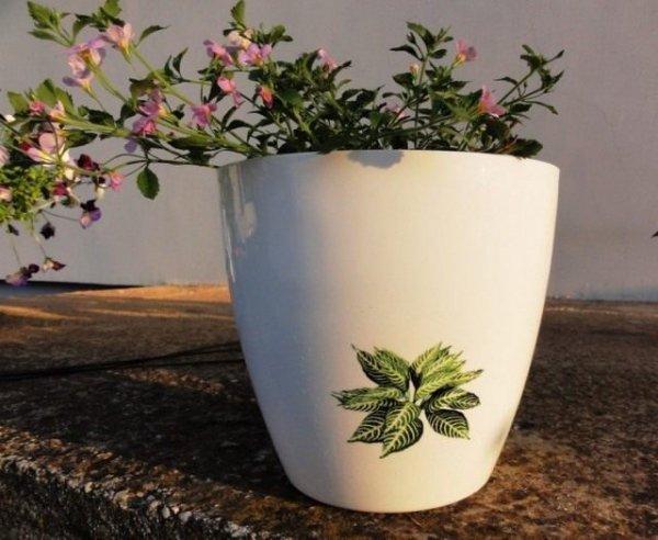 Какой горшок выбрать для комнатного растения? Плюсы и минусы пластиковых, керамических и других горшков