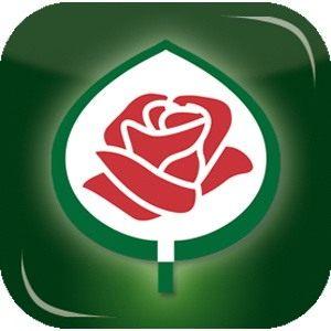 Что значит знак ADR у розы и сорта роз со знаком АДР