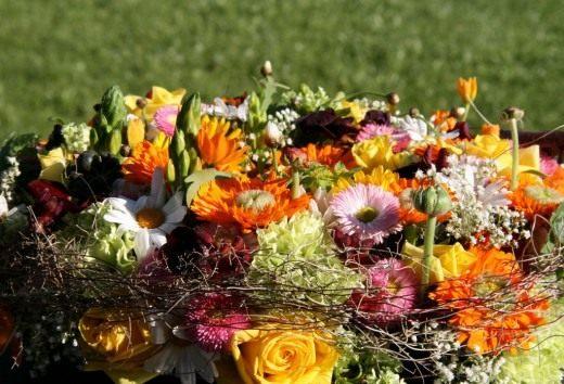 Аранжировка растений - советы с фото и видео