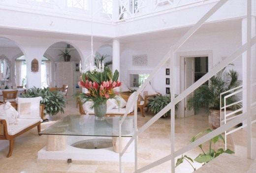Комнатные растения для холла и лестничных площадок