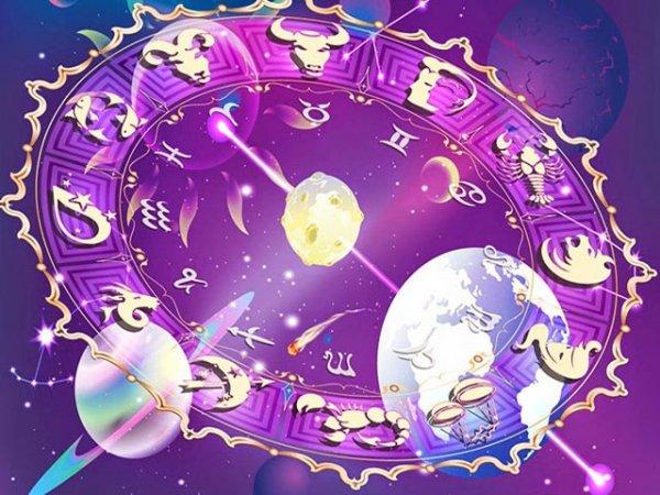 Гороскоп на 2019 год Желтой Свиньи по знакам зодиака и году рождения