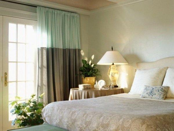Растения для спальни - какие комнатные цветы выбрать? Фото и видео