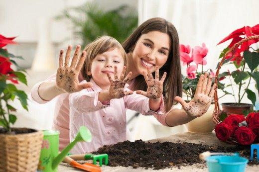 Растения для детской комнаты фото и видео ТОП-10