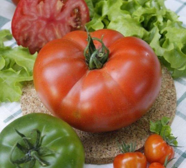 Сорта помидоров для свежих салатов и заготовок разные!