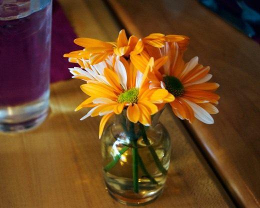 Правила срезки растений и как сохранить цветы в букете
