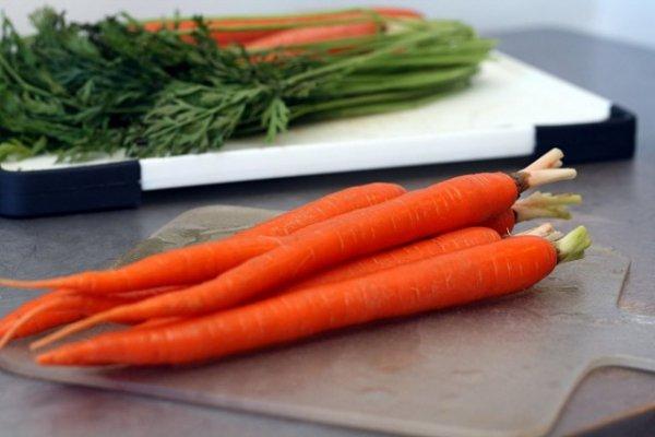 Выращиваем морковь - посадка и уход с фото и видео