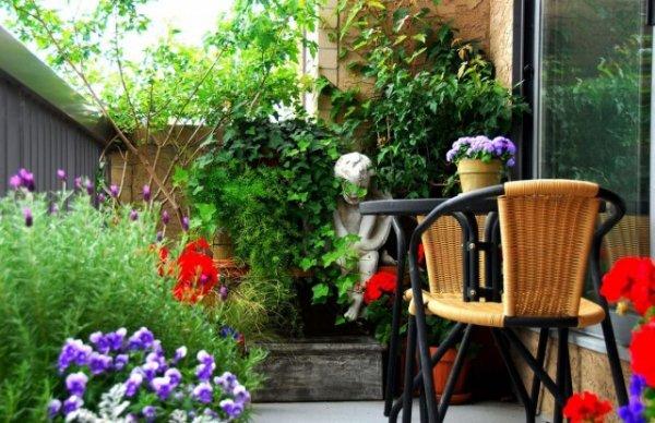 Вертикальное озеленение балконов - фото и видео