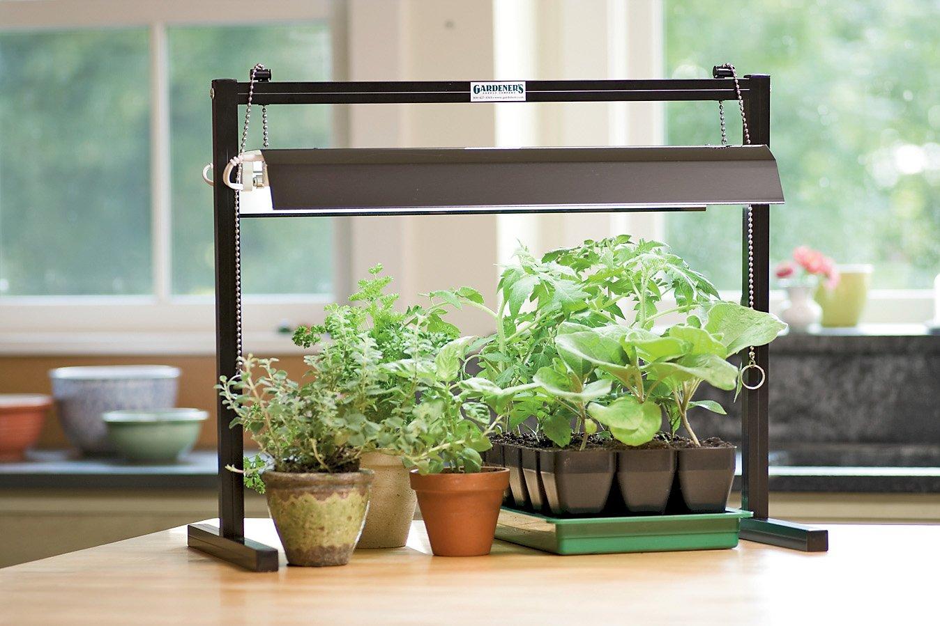 Освещение для растений и дополнительная подсветка