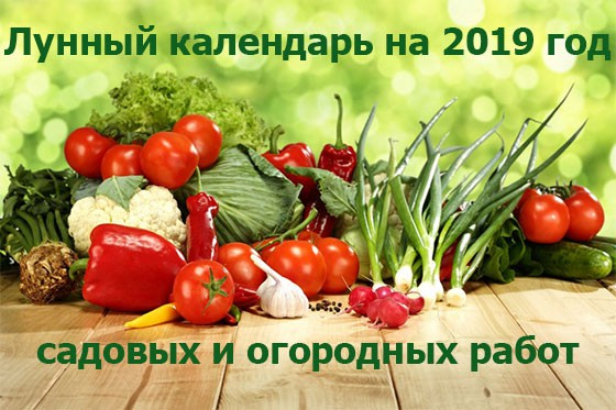 Лунный календарь на 2019 год садовых и огородных работ по месяцам