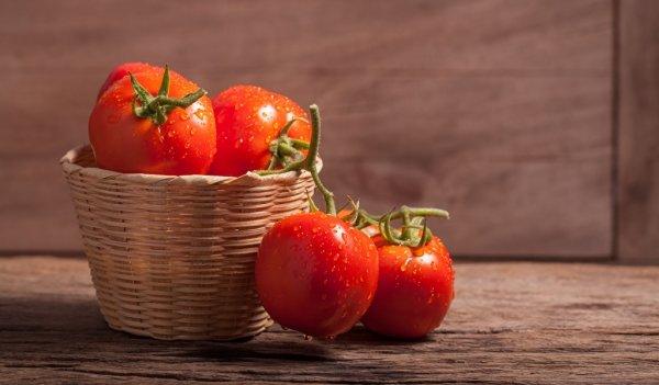 Лунный календарь посадки помидор в феврале 2019 года