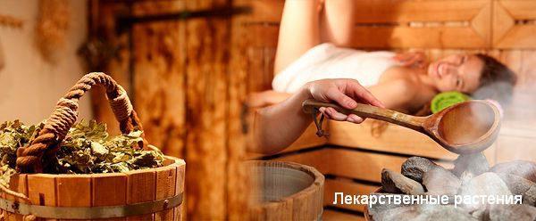 Отвары для бани и сауны своими руками - рецепты