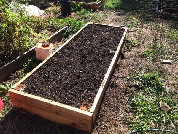 Подготовка почвы для подзимней посадки чеснока