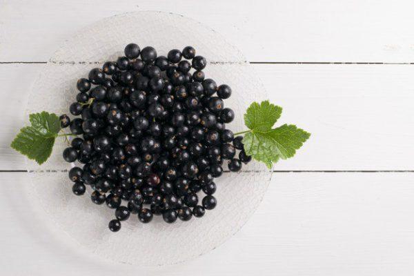 Польза смородины для красоты и здоровья