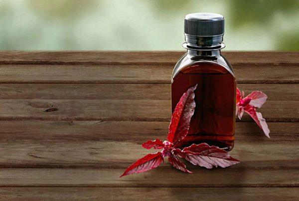 Амарантовое масло – польза для красоты и здоровья
